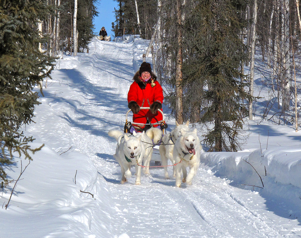 dog sledding inuvik